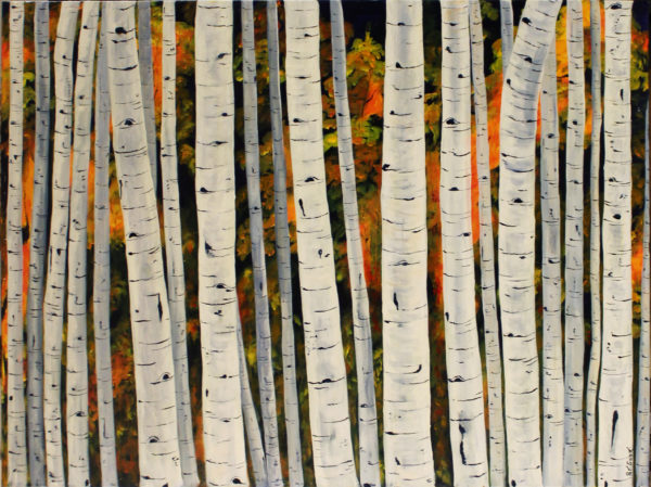 Birch Trees in fall acrylic painting deep canvas 3' x 4'