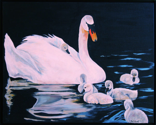 White Swan and Cygrets acrylic painting deep canvas