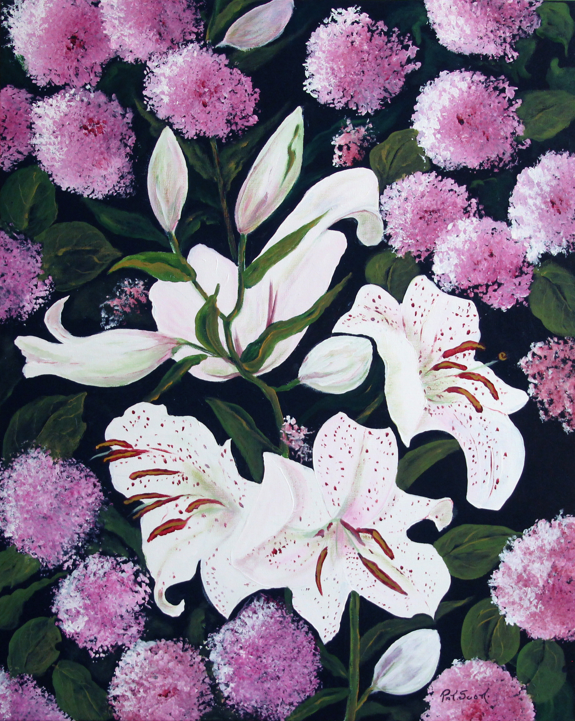 White Lily Hydrangia Acrylic Deep Canvas 2 By 2 Pat