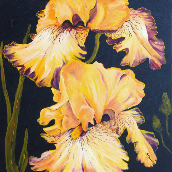 Orange Iris acrylic painting deep canvas