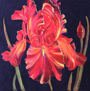 Red Iris acrylic painting deep canvas